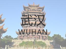 武汉绿植租赁