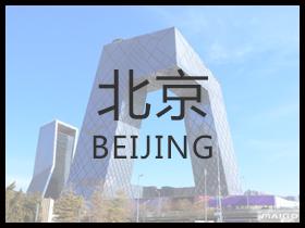 北京绿植租赁
