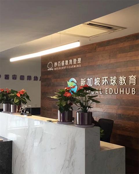 新加坡环球教育集团与泰笛建立办公室绿植租赁合作