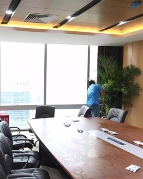 广州百胜网络科技有限公司与广州泰笛建立绿植租赁合作
