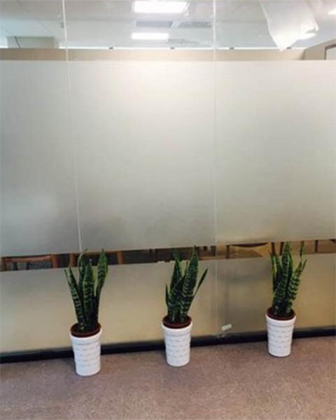 南京佳恩瑞物业管理有限公司与南京泰笛建立绿植租赁合作